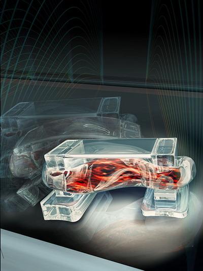 美研制出生物机器人 目标用作自主传感器
