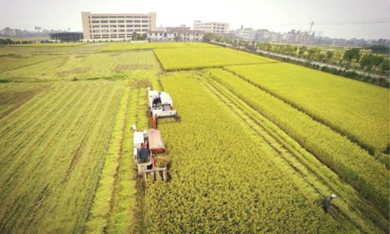 实现农机行业转型升级需营造良好的营商环境