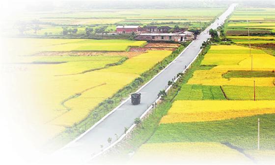 中央1号文件连续15次提及农村物流 农村物流用春天来了
