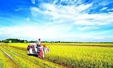 今年中国大农业要做这几件大事儿!
