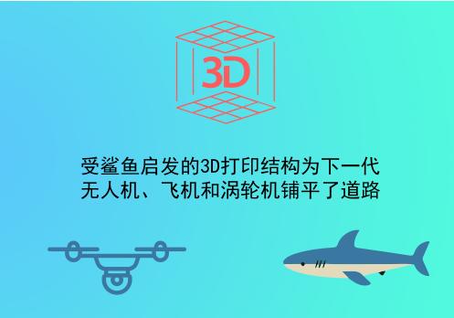 受鲨鱼启发的3D打印结构为下一代无人机、飞机和涡轮机铺平了道