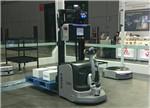 人类将进入纳米机器人时代