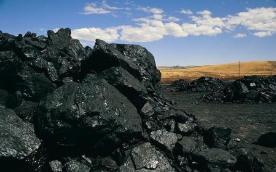 高需求支持 钢铁煤炭表现强势