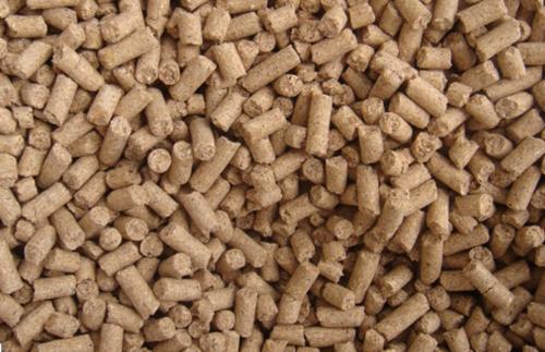 全球首個飼料中霉菌毒素高通量檢測標準發布