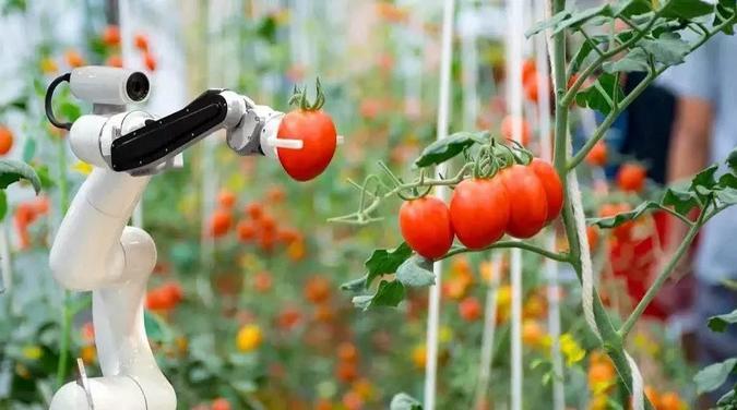 上海將建成10萬畝無人農場