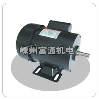 YY-单相电容运转钢板壳电机 电机