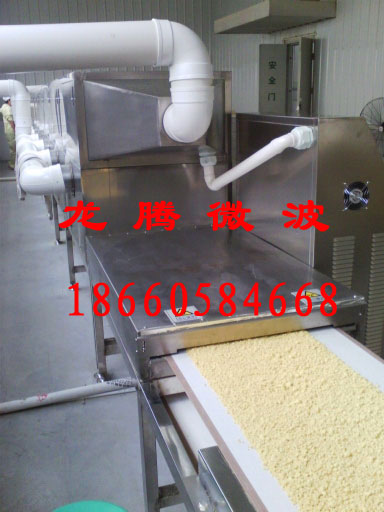 小麦胚芽微波烘干机