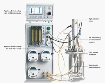 德国Applikon生物反应器