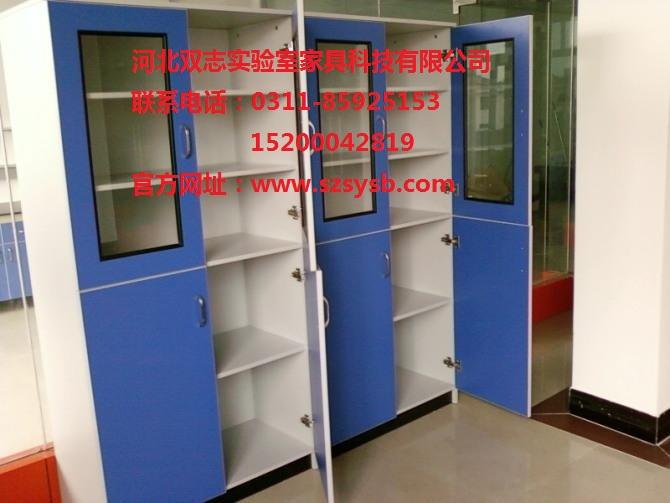 河北石家庄实验室家具,实验室设备--实验室药品柜/药品柜