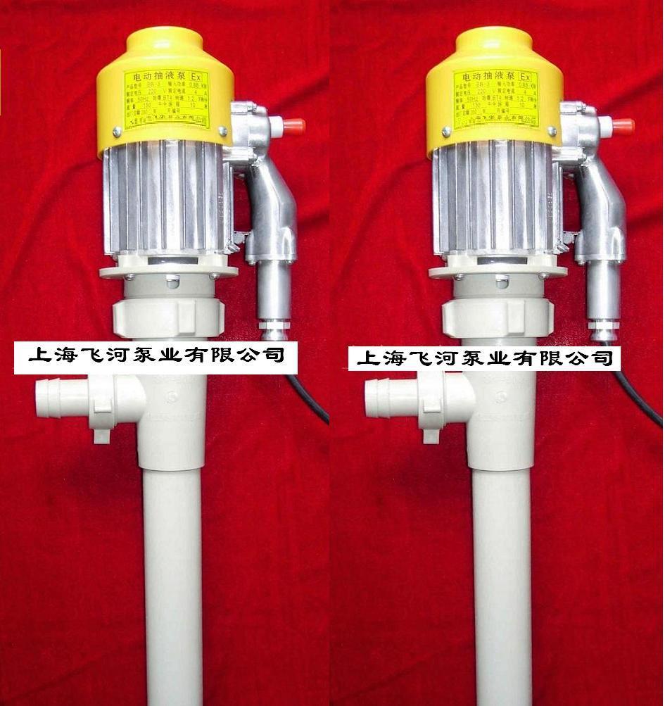 化工防腐桶用泵(油桶泵,电动抽液泵)