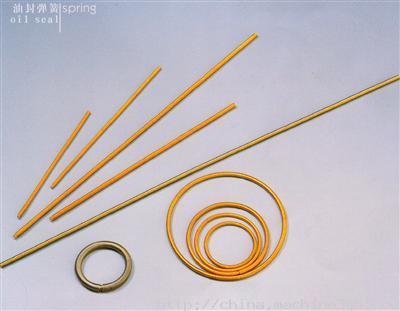 杭州油封弹簧,油封弹簧市场价,油封弹簧