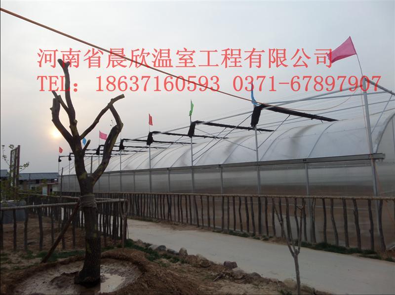河南省晨欣温室工程有限公司拥有自己的温室大棚建造队伍,该队伍经验丰富、技术全面,对温室大棚建设进行一条龙服务,并且对温室大棚的日后修理进行技术指导。 日光温室大棚:日光温室是一种节能型作物生产设施,能够充分利用太阳光热资源,在寒冷的季节不加温的情况下依然能越冬生产喜温果菜。它主要是利用太阳光给温室增加温度,从而实现冬季喜温性蔬菜生产的目的,不需要进行人工补温。用日光温室大棚种植蔬菜,既丰富了冬季蔬菜的市场供应,又增加了菜农们的经济收入,已成为农民致富增收的一条有效途径,目前在山东省及黄淮海地区,已被大面积