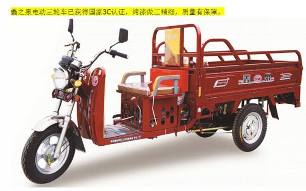 2010电动三轮车质量排行榜-2010电动三轮车排名