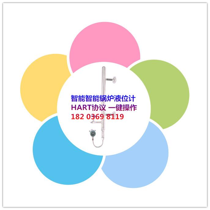 FRD803系列锅炉汽包液位计/锅炉汽包水位计