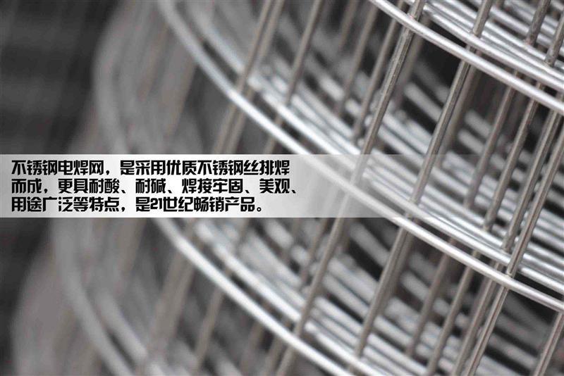 高品质304不锈钢焊接网.304不锈钢焊接网片