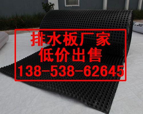 求购  临沂排水保护板厂家滨州白色无纺布施工图