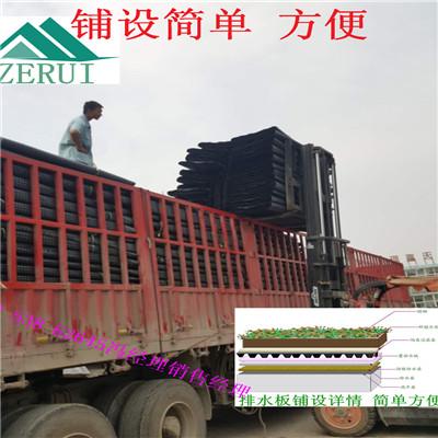 求购江西地下室蓄排水板20高25高绿化透水板销售