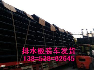 求购长沙塑料排水板厂家批发hdpe车库塑料夹层板
