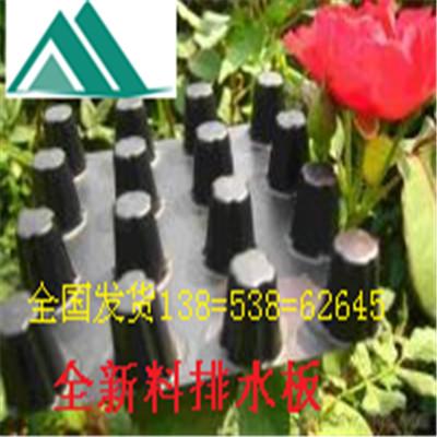 求购锦州高层绿化排水板《车库聚乙烯》耐根刺排水板