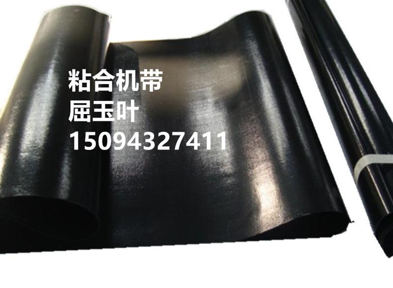 传动带特氟龙特富龙PTFE无缝皮带压衬机粘合机输送带粘合机皮带