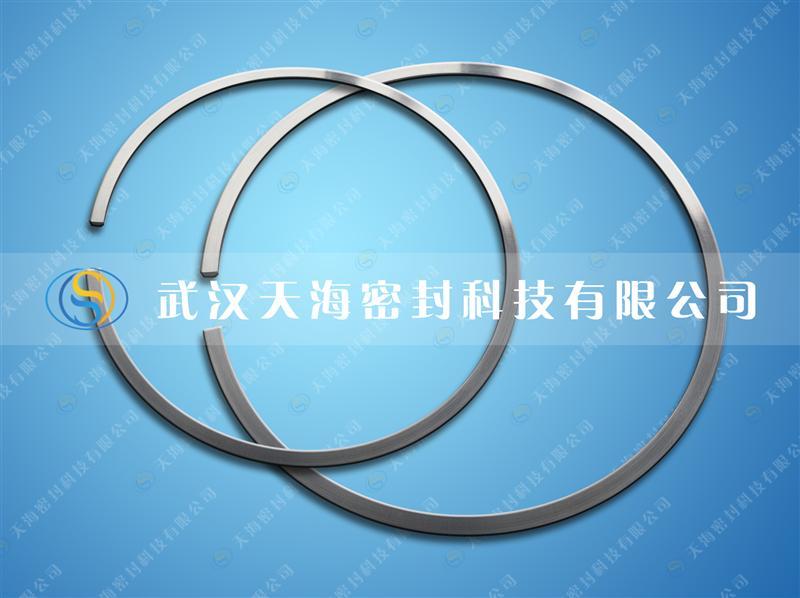 天海密封重型内燃机钢质密封环