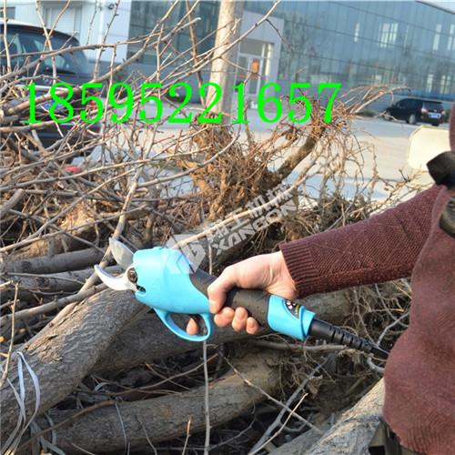 果树电剪刀翔工电剪刀生产厂家